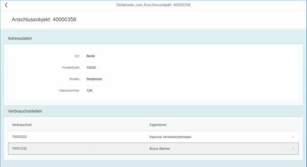 SAP Fiori - Detailseite des Anschlussobjektes