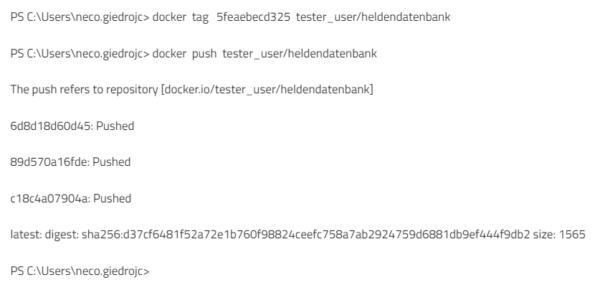 Upload ins Docker Repository