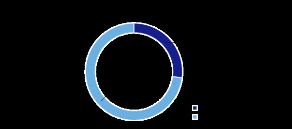Umfrageergebnisse: Arbeiten Sie an einem oder an mehreren Projekten?