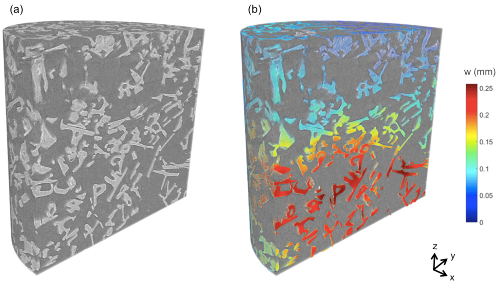 3D visualization of snow crystals in bed of fresh snow (a). Quantitative analysis of snow compaction in bed when loaded at 10 N (b).