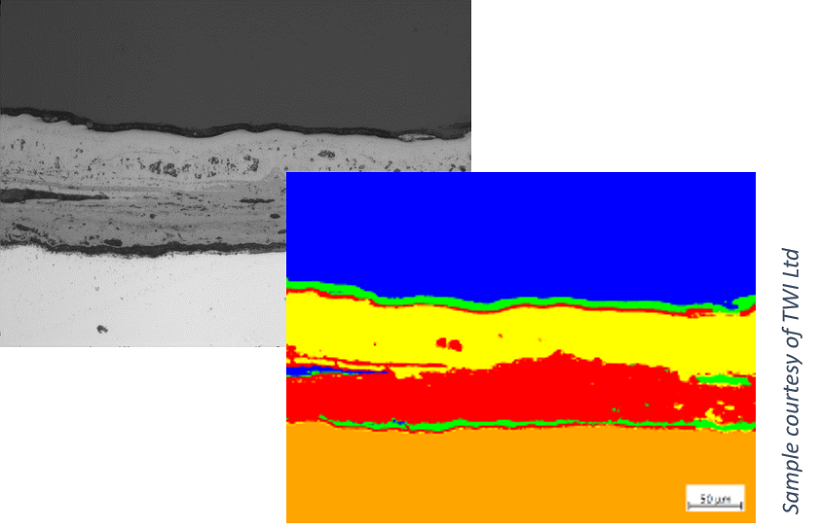 High Temperature Corrosion Scale on 9% Chromium Steel.  Left side (background): Brightfield image; Right side (foreground): individual layers segmented with machine learning Sample courtesy of TWI Ltd