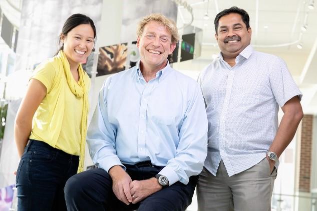 The Carl R. Woese Institute of Biology scientists (from left):  Jessica Saw, Bruce Fouke, Mayandi Sivaguru Photo by L. Brian Stauffer