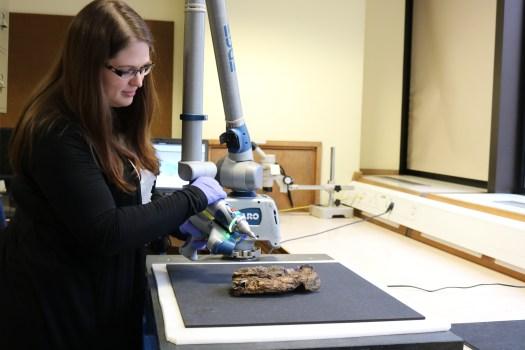 To image the specimens Kate Burton uses mobile handheld laser scanners.  Image: NHM