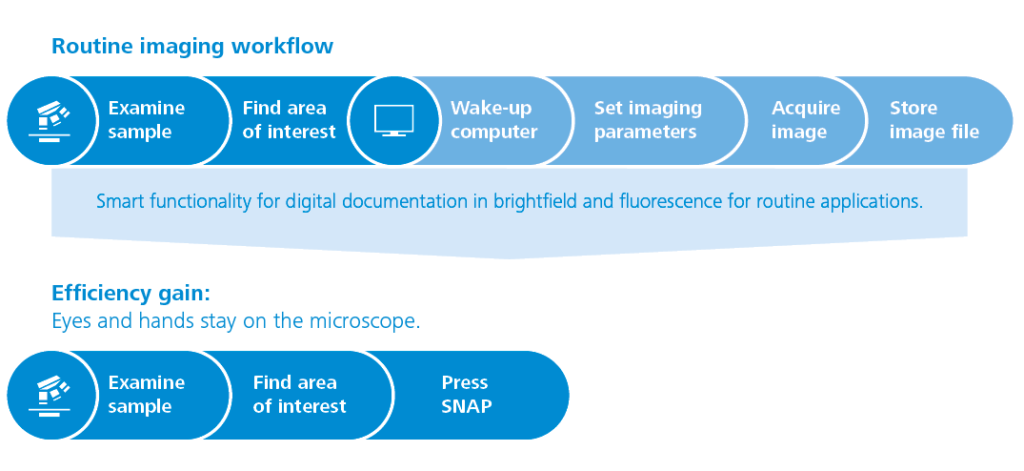 Gaining efficiency with ZEISS Smart Microscopy: A new routine imaging workflow