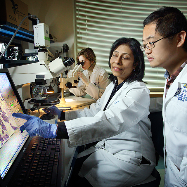 The Sukumar laboratory is to obtain a molecular profile of breast cancer and to apply this knowledge to the early detection, diagnosis and therapy of breast cancer.