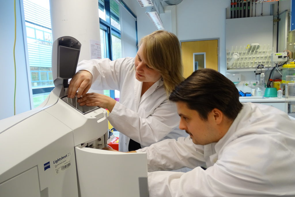Anja Meents and Veit Grabe place the sample and prepare the ZEISS light sheet microscope for the measurement.