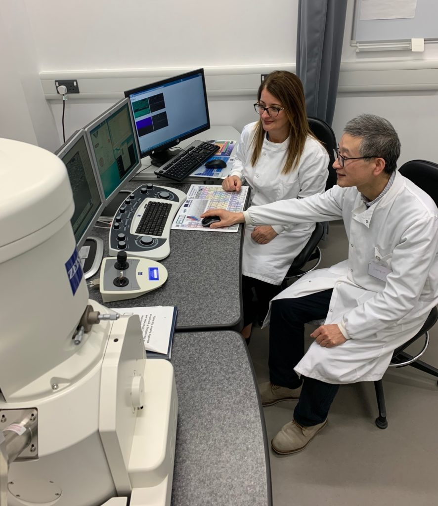 Dr. Josette Camilleri, the academic leading the research on hydraulic cements, at the University of Birmingham and Dr. Jianguo Liu who runs the scanning electron testing (SEM) facility at the School of Dentistry during one of the sessions using a ZEISS SEM for microstructural and elemental analysis
