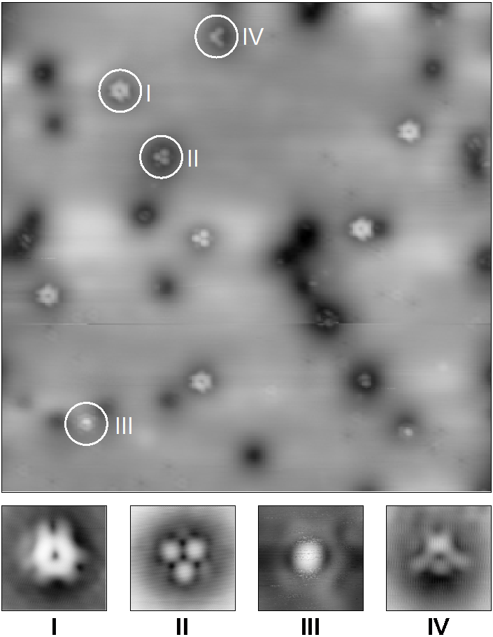 Scanning Tunneling Microscopy (STM) image of constantly helium ion-irradiated single-layer MoS2 measured at the Molecular Foundry (Berkeley, USA) together with B. Schuler and A. Weber-Bargioni. The bombardment induces four types of defects labelled I-IV and black spheres.