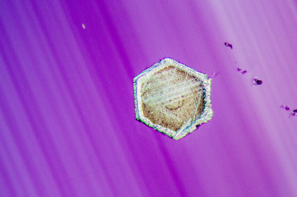 A small hexagonal platinum crystal is firmly attached to the surface of this synthetic chrysoberyl. Epi-DIC microscopy reveals significant surface detail on this curious contaminant. Field of View: 1.44mm. Copyright: Nathan Renfro