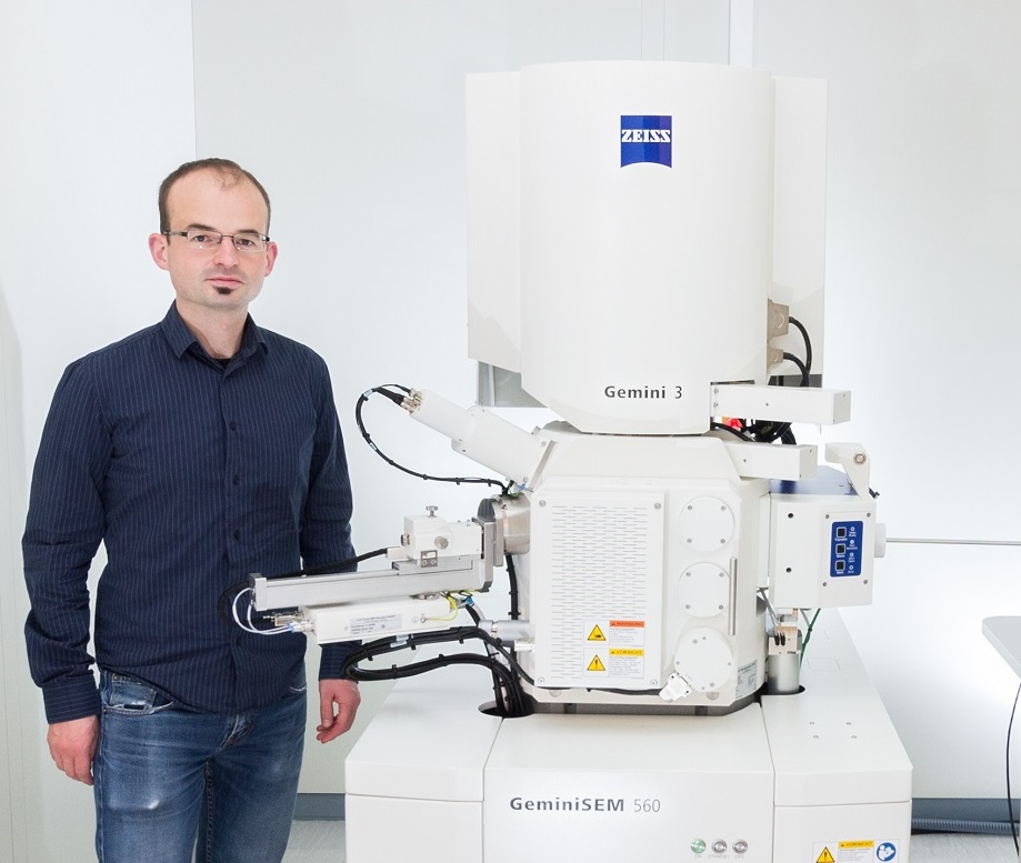 Development of Novel Quantum Sensors with New FE-SEM Technology
