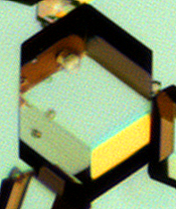 Optical microscopy image of hexamine showing the rhombic dodecahedron crystal morphology. Images courtesy of Hien Nguyen, The University of Leeds, and reproduced from Gajjar et al (2021) under a CC-BY license.