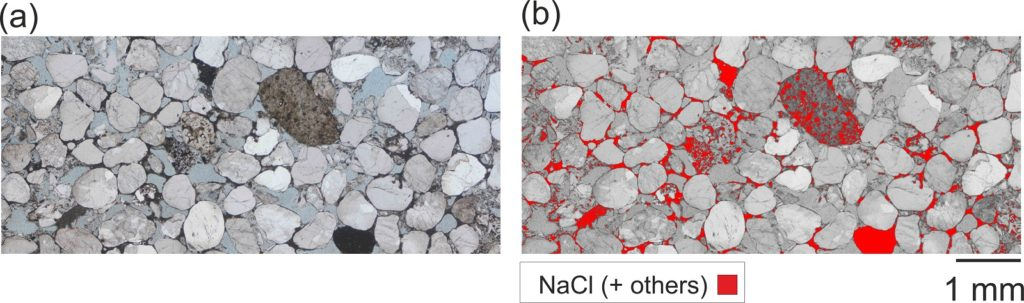 Salt precipitation inferred from thin section petrographic analysis in the sample fully-dried after the carbon dioxide injection test. The segmentation accounts for NaCl and other isotropic minerals of the original sample.