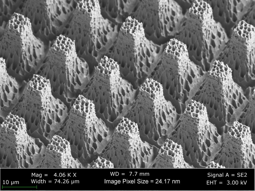 A side-view image capturing details of one of the superhydrophobic surfaces used in this study. The superhydrophobic texture has multiple length scales and is composed of micro-scale post features and nano-scale nanograss features.  Image courtesy of Dr. Kripa