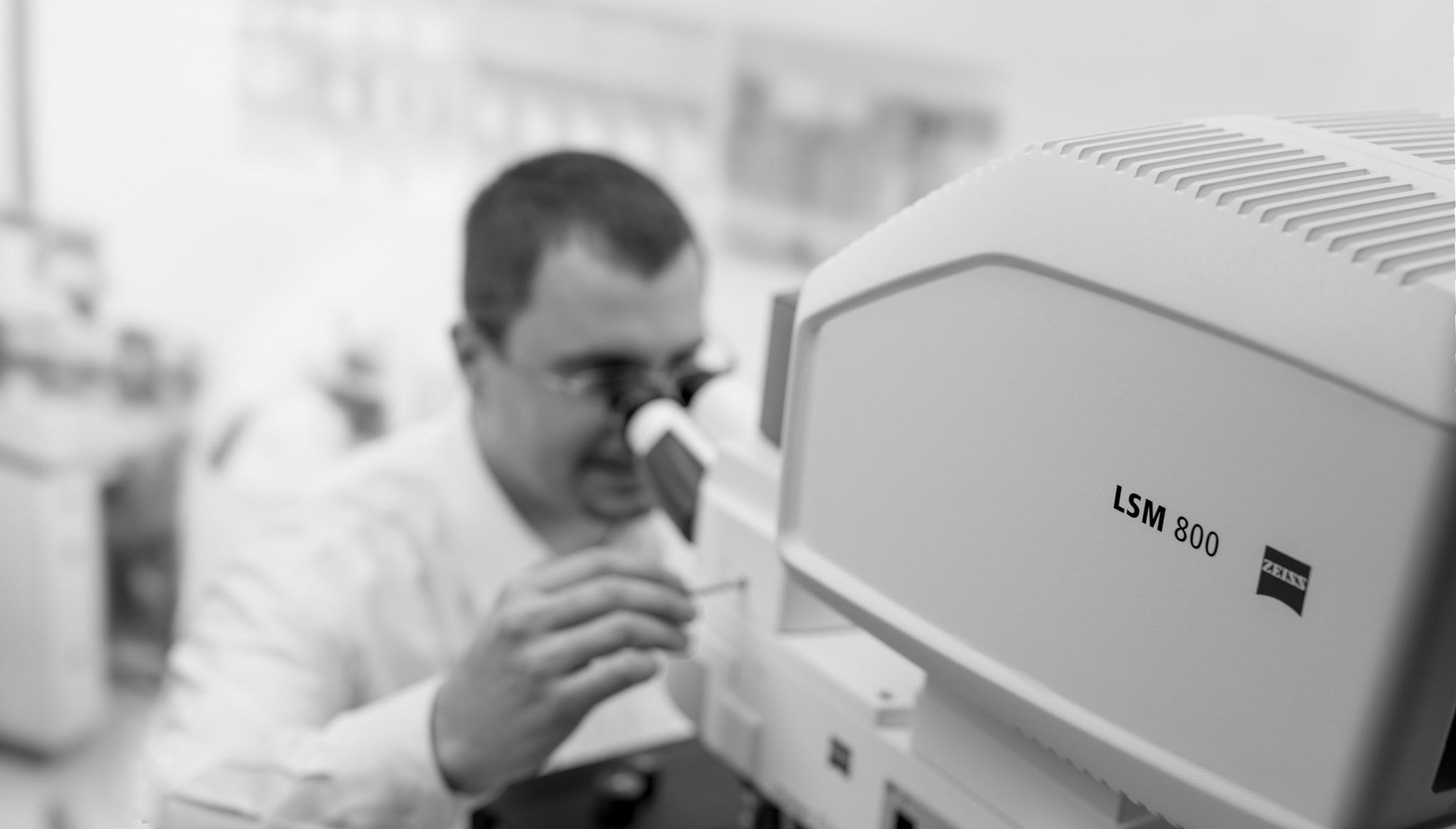 ZEISS LSM 800 für Materialmikroskopie