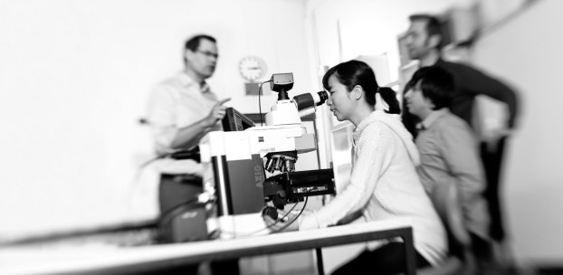 Training and Education - Made by ZEISS