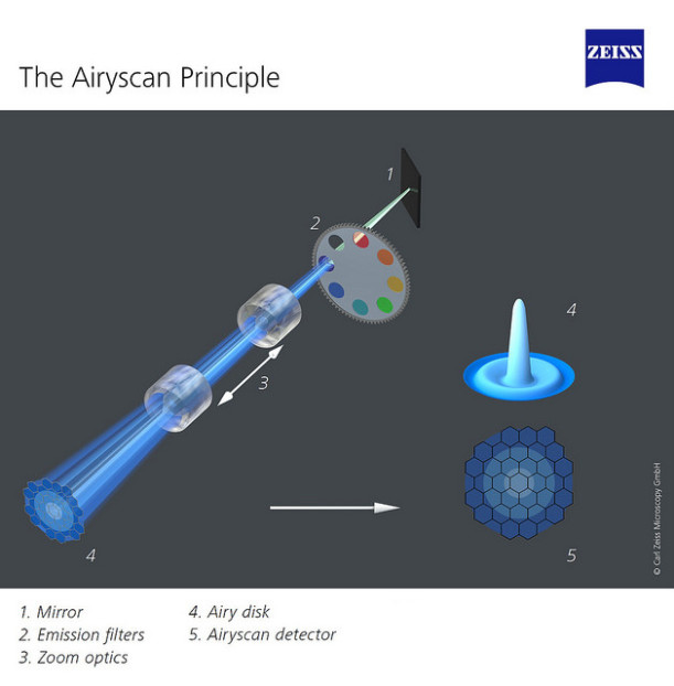 The Airyscan Principle