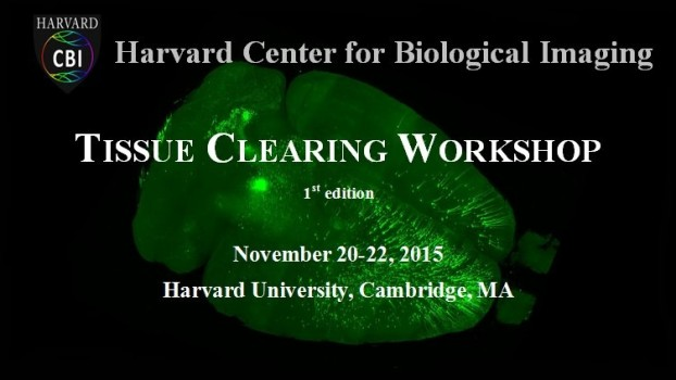 The HCBI Tissue Clearing Workshop 2015