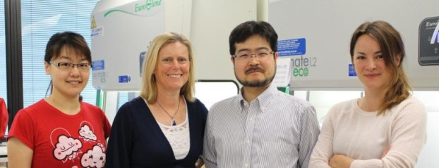 Co-authors Dr Minoru Takasato and Professor Melissa Little, and colleagues. Courtesy of MCRI.