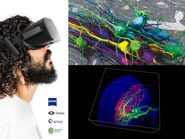 ZEISS at Neuroscience 2015: Experience microscopy like never before!