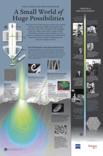 THE SCANNING ELECTRON MICROSCOPE: A Small World of Huge Possibilities