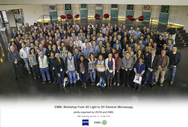 EMBL Workshop From 3D Light to 3D Electron Microscopy, jointly organised by ZEISS and EMBL, Heidelberg, Germany 13 - 16 Mar 2016
