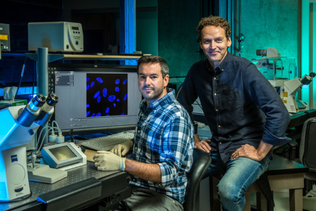 Salk scientists identify the cell nucleus as a driver of gene expression and, sometimes, disease. Arkaitz Ibarra and Martin Hetzer with ZEISS confocal microscope systems. Credit: Salk Institute