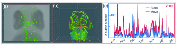 "Fig. 2: (a) When users moved the sample through the light sheet, the fluorescence signal of the acquired plane (green) was overlaid with the transmission image (gray). (b) When a stack was acquired, data were given a unique RGB value depending on position, and a transparency depending on intensity. These data were overlaid from back (blue) to front (red). (c) During the time in the museum, we logged the number of button presses. Overall usage increased during the winter months, and isolated spikes occurred during special events, such as the ""Long night of the open museum""."