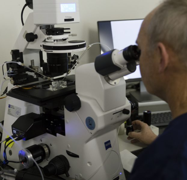 Felix Roth von Fiore im Labor mit ZEISS Axio Observer, ausgestattet mit Narishige-Manipulatoren und einem Lasersystem.