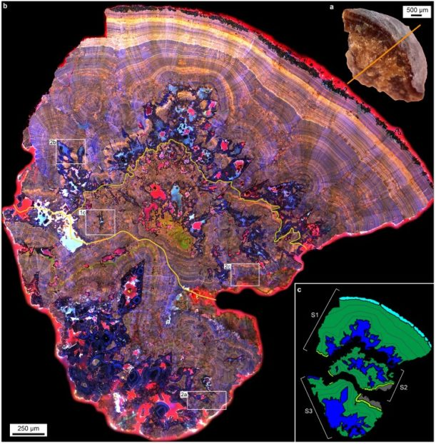 A tiled (20x20, 400 images x 3 channels= ~1200 images) 405, 488 and 561 nm ex and their corresponding emission detected using the ZEISS LSM 880 confocal system showing a single stone could be actually a combination of 3 stone complex. Image provided by Mayandi Sivaguru, Jessica Saw and Bruce Fouke.